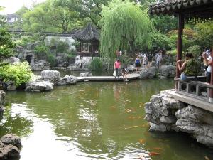 yuyuan garden's koi