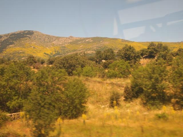 On the train en route to El Escorial